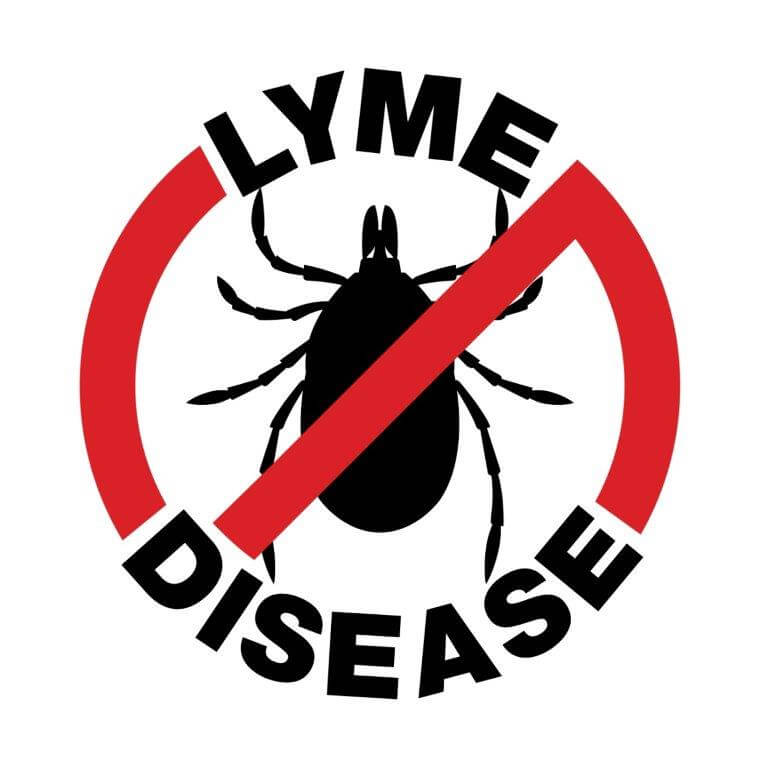 no lyme Disease logo