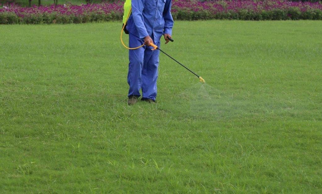 Mosquito, Flea, Tick spray on lawn