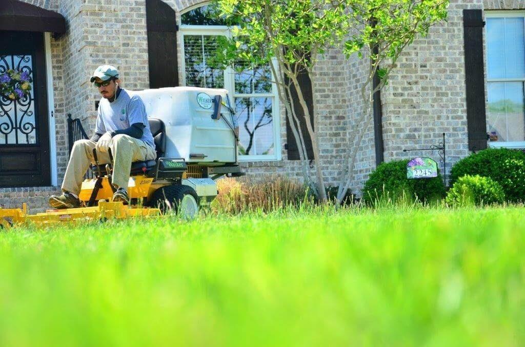Cutting grass on a lawn mower