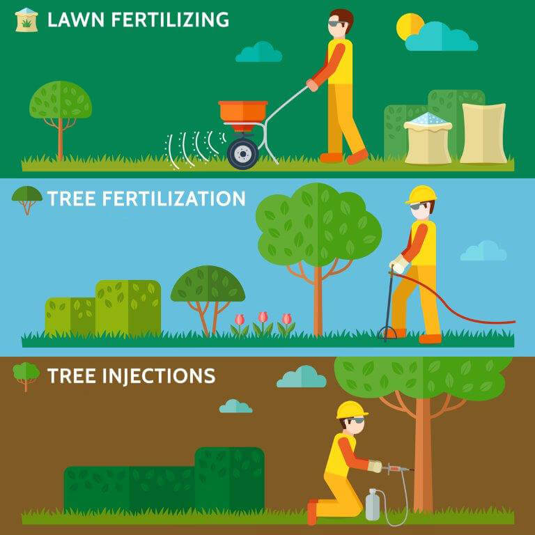 Lawn fertilizing, tree fertilization, tree injection