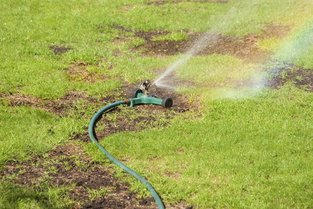 Unmaintained irrigation causing lawn brown patches